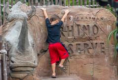 The Rhino Climber (Pejasar) Tags: boy child climb rhino rider tulsa zoo oklahoma redshorts sandals