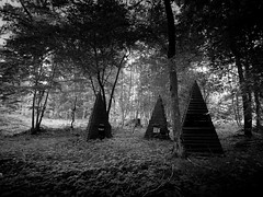 L'Enigme des Triangules (Clydomatic) Tags: forêt arbress bois construction triangle pyramide