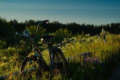 Reliable Bike 03:53 (Ludwig Ohlson) Tags: finland scandinavia sunrise samyang 50mm xe2 fujifilm nordic summer midnightsun nature bike old