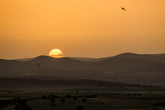 Atardecer (Jesus DTT) Tags: puestadesol parqueforestal laatalaya ciudadreal torre pantano vicario embalse sunset nikond3200 nikon55200