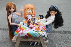 Picnic Day!!! :) (Ninotpetrificat) Tags: picnic asuna azone azonedoll asiandoll doll rement ruruko petworks puppe toys asiantoys sao nendoroid nendo umaru umaruchan totoro hobby kawaii cute japandoll japantoys