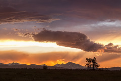 Colorful Colorado Front Range Summer Night (Striking Photography by Bo Insogna) Tags: colorado sunset mountains sky range bouldercounty rocky high dusk orange boulder summer front peaks horizon landscape clouds brilliant fiery elevation mountain blue red panoramic colorful tranquil evening west peak western altitude moody longs sun jamesinsogna