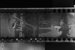 10 (andrea.fogliacco) Tags: giallo film pellicola ilford fp4 plus sviluppo rullini vintage black white develop developed reflex old school vecchia scuola