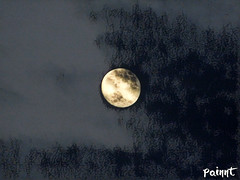 Look for your Moonshadow (TwinLotus II) Tags: moon coolpix coolpixb500 black shadow painnt hhs