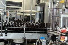 On their way to the labelling machine (Davydutchy) Tags: texel oudeschild eiland island insel île noordholland nederland netherlands niederlande paysbas texelse brouwerij brewery brauerei pivovar bier beer bière pivo cerveza beoir пиво biero bir øl μπύρα sör بيرة בִּירָה bottelarij bottling abfüllen fill june 2017