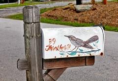 39 Thrasher Street ....   Explored # 196 (~ Cindy~) Tags: countrymailbox thrasherstreet explored 196