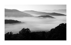 Blue Ridge (Joe Franklin Photography) Tags: valleyfog almostanything mountains blueridge blueridgeparkway brp blackandwhite bw joefranklin wwwjoefranklinphotographycom fog mist parkway