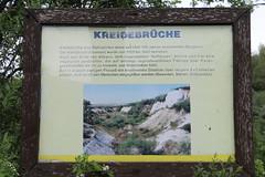 Kreidebruch, Info (julia_HalleFotoFan) Tags: rügen jasmund gummanz kreidemuseum kreide museum
