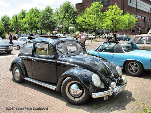 Volkswagen Käfer Ovali, 1955