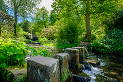 Himalayan Garden (Andrew Stawarz) Tags: countryhouse fujinonxf1024mmf4rois fujifilm harewoodhouse himalayangarden johncarrandrobertadam statelyhome steppingstones stream westyorkshire xt2 adobelightroom