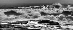 Violence of the Sea (anicoll41) Tags: seatonsluice northumberland england gb sea violent drama monochrome waves