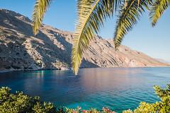 Paradise (A & A McKee) Tags: tokina 29 nikon dslr d500 palm sea water blue mountain summer sunlight mediterranean landscape wide angle photography loutro crete greece 1116mm beautiful