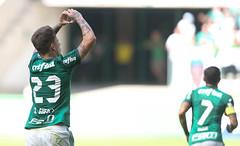 Palmeiras x Vitória (16/07/2017) (sepalmeiras) Tags: allianzparque campeonatobrasileiro palmeiras sep sériea vitória palmeirasxvitoria16072017 rguedes