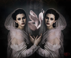 The Secret of Blooming (Spoken in Red) Tags: blooming twins mirroring lace vintage fineartportrait conceptualportraitphotography headcovering veils lotus pink spokeninred jenniferrhoadesphotography