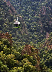 Ropeway green (uhx72) Tags: thale harz germany nature forest ropeway seilbahn