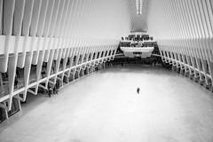 The Man with the Briefcase (John St John Photography) Tags: streetphotography candidphotography worldtradecenter pathstation churchstreet newyorkcity newyork oculus man briefcase walking people peopleofnewyork bw blackandwhite blackwhite blackwhitephotos johnstjohn