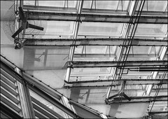 Metal and Shadow (ammozug) Tags: bw monochrome abstract architecture glass metal shadow phipps conservatory pittsburgh pa
