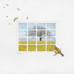 Lone Tree (tina777) Tags: scrapbooking page serif craft artist digikit window tree