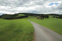 In the countryside (_dankhn) Tags: sauerland hochsauerland nrw deutschland germany landscape landschaft countryside way trail barn village clouds sky summer field green meadow