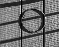 IMGP1332 (agianelo) Tags: bw blackandwhite ring plank wood texture abstract