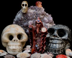 Off to see the Wizard (Evoljo) Tags: wizard skull crystal stone wand magic shells hat spell nikon d500