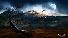 (~Brenda-Starr~) Tags: july2017 landscape moon owl bird water grass mountains tree nature lake clouds allrightsreserved
