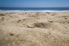 Focused on the beach (joscelyn_p) Tags: oceancitymaryland oceancity ocmd maryland beach sand pattern canon lightroom travel water ocean atlanticocean