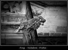 Gargoyles - 28 (fotomänni) Tags: prag prague praha gargoyles gargouille wasserspeier skulptur skulpturen veitsdom blackwhite schwarzweis noirblanc manfredweis