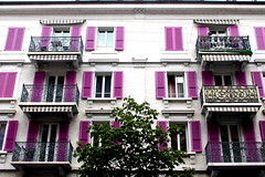 some like it purple (overthemoon) Tags: switzerland suisse schweiz svizzera romandie vaud lausanne boulevarddegrancy façade shutters windows tree balconies wroughtiron purple apartments