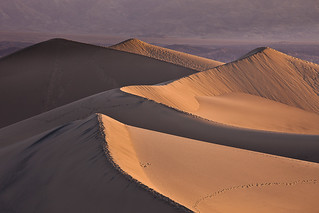 Golden Hour on Mesquite Flat Sand Dunes