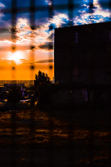 DSC_0927 (fisar.monica) Tags: napoli tramonti sunset naples murales streetart rain streetphotography lights
