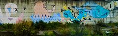 DSC_0120_edited (fisar.monica) Tags: napoli tramonti sunset naples murales streetart rain streetphotography lights