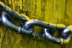 Macro Mondays - 3 Chain Links... (mc_icedog) Tags: metal chain macro mondays wood colors shallow depth field links