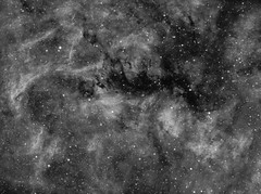 Reflexion Nebula NGC6914 in Hα widefield (Carballada) Tags: astrophotography astronomy deep space astro celestron zwo as1600mmc skywatcher ts sky qhy qhy5iii174 narrowband