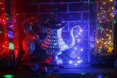 DIY Boho Chic Decor Lantern Pot (blackunigryphon) Tags: boho bohochic bohodecor decor bohemian lantern lanterns pot ledlights balconydecor balcony whimsy whimsical ambient diy project artproject gypset gypsetter bohostyle eclectic instillationart dslr canon kandicezimbleman artsandcrafts wirewrapping crystals newage hippie hippiechic rave raver candles