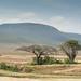 Africa Part 1 -044