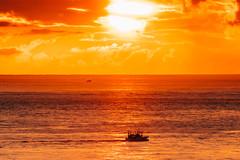 Sunrise|早安地球 (里卡豆) Tags: taiwan strait chiayi 台灣 olympus penf 300mm f40 olympus300mmf40pro sunrise dusk 日出 海平面 sea 海 sun sunlight 船 boat