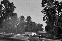 Lomography Lady Grey Earl Nikon N65 (C. Campbell) Tags: drift drifting lomography patacres parcdrift nikon n65