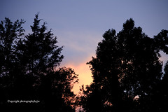Warm Summer Sunset (Photographybyjw) Tags: warm summer sunset cloudless sky with dark blue north carolina photographybyjw rural country usa trees foliage