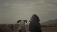 (I am winter) Tags: 35mm beautiful dog friend girl view autumn love travel outside enjoy portrait