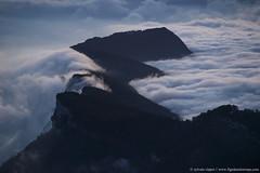 DSC_7478 (www.figedansletemps.com) Tags: chartreuse sainteynard montagne mountain alpes alps isère dauphiné france grenoble merdenuage brouillard brume