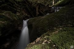 Schlucht bei Bregenz (SVNKNR) Tags: bregenz österreich austria schlucht canyon waterfall wasserfall longexposure samyang walimex 12mm rollei haidafilter gobefilter forest trees water river creek landscape nature