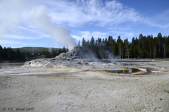 Castle Geyser and its partner Tortoise Shell Spring (V. C. Wald) Tags: castlegeyser uppergeyserbasin yellowstonenationalpark tamron16300mmdiiipzd geothermalfeature