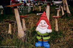 Mushroom Dweller (nigelboulton72) Tags: gnome mushroom toadstool