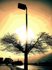 Selman Repišti : ''The Great Division'' (SelmanR) Tags: mobilephoto lamp lamppost streetlight sunset river drina bosniaandherzegovina street nature tree sun