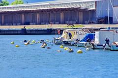 116 - Croatie, Ploče, sur le port (paspog) Tags: ploče croatie port hafen croatia mai may 2017