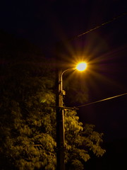 Glow (Luigidenoel) Tags: light glow standardlamp night dark tree green yellow orange blurred line electric cable electriccable ray artificial confused shadow