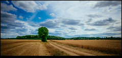 170624-2517-XM1.jpg (hopeless128) Tags: path france sky eurotrip fields tree 2017 clouds nanteuilenvallée nouvelleaquitaine fr