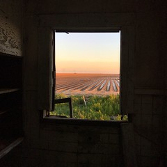 """""""Once A View"""" An abandoned house on the cotton fields of Texas, a history insight I had, knowing how life once went there, it makes me very sad. A lost love attached, dreams broken then and now...I cry...I'm left with only two words, and that is how and w (bradhodges09) Tags: window sunset sky indoors landscape agriculture scenics abandonedbuildings abandonedplaces lostlove poetry poetryinpictures brokendreams westtexas cottonfields westtexasskies silhouette metaphor"""