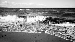 Down by the Water (Diaffi) Tags: analog balticsea selfdeveloped ishootfilm monochrome ostsee wasser water waves beach strand blackandwhite bw
